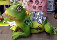 Ein lustiger Frosch aus dem Smap Magazin
